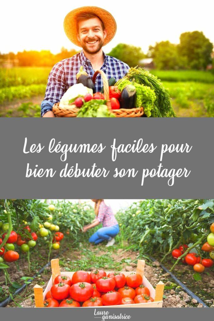Les légumes faciles pour bien débuter son potager