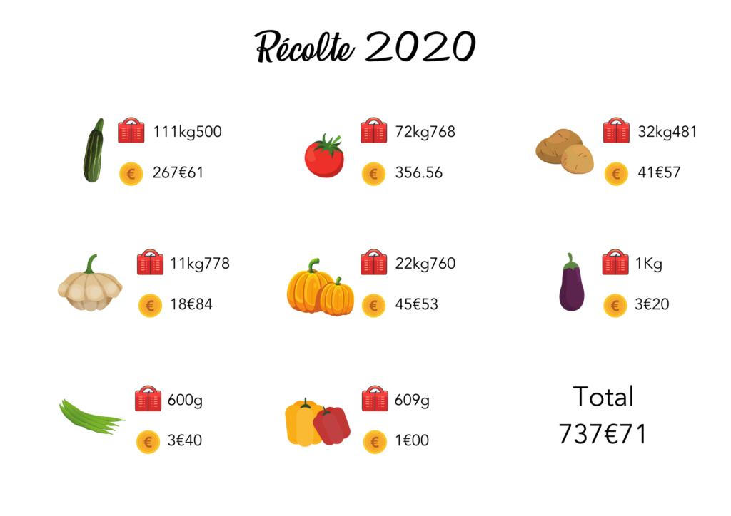 Bilan des récoltes de notre potager en 2020